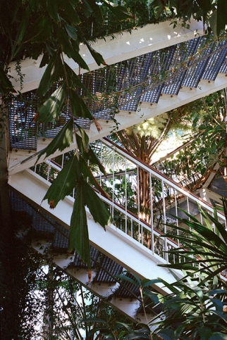 https://mariepierrecravedi.com/files/gimgs/th-25_01-botanical-high-.jpg